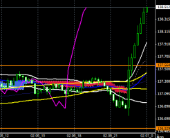 FXEURJPY140206END